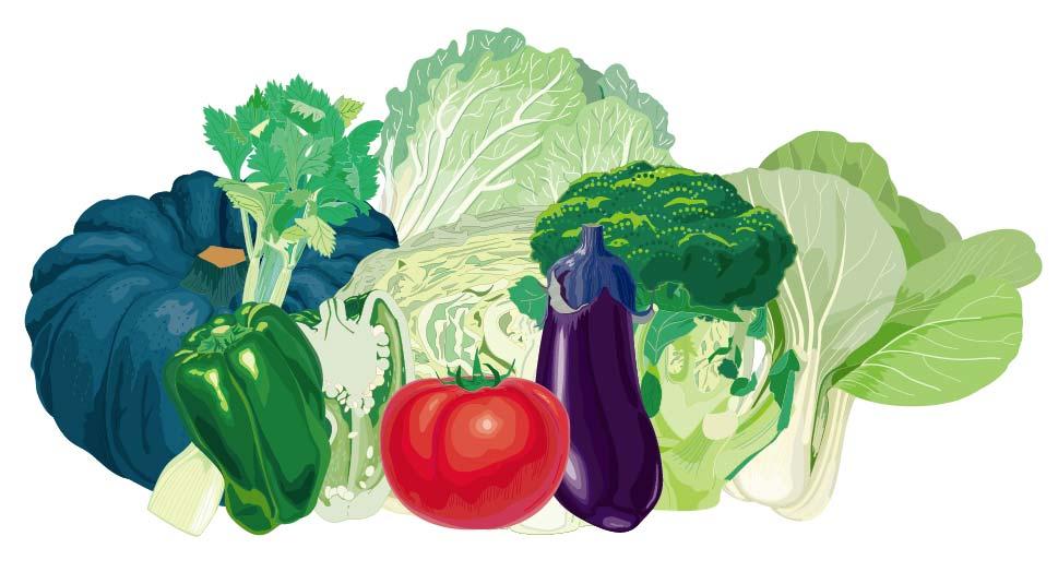 野菜のベクターデータ・AI形式