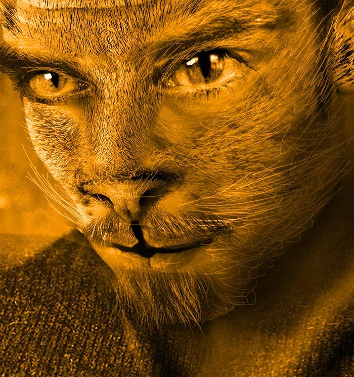 ネコと男の顔の合成2
